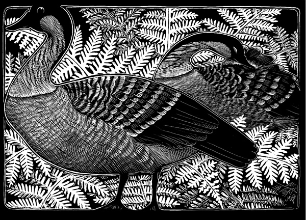 "Michelle Dick's scratch art image titled - ""Nene"""