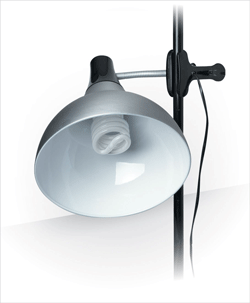 Daylight Artist Clip-on Studio Lamp, Satin Silver