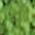 Jack Richeson Powder Paint - Color Green 43 - Size 1 lb.