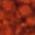 Jack Richeson Powder Paint - Color Brown 55 - Size 1 lb.